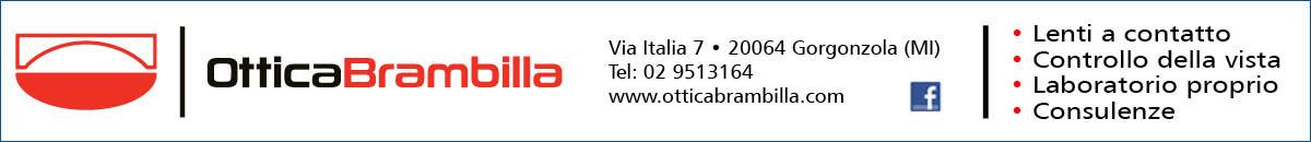 Ottica Brambilla istit 2017